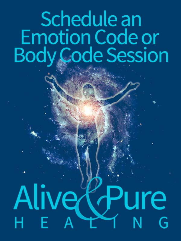 Schedule an Emotion Code or Body Code Session with Alive and Pure Healing